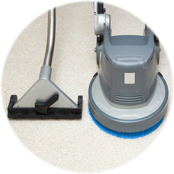 Affordable carpet cleaning services near me in Melbourne