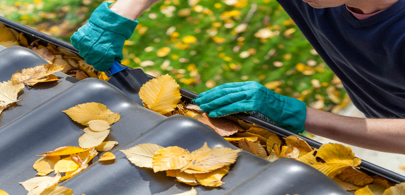 Gutter cleaning & clearing company.