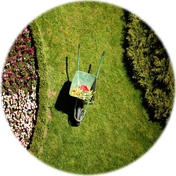 All forms of gardening, lawn mowing and lawn care services in western and northern Melbourne